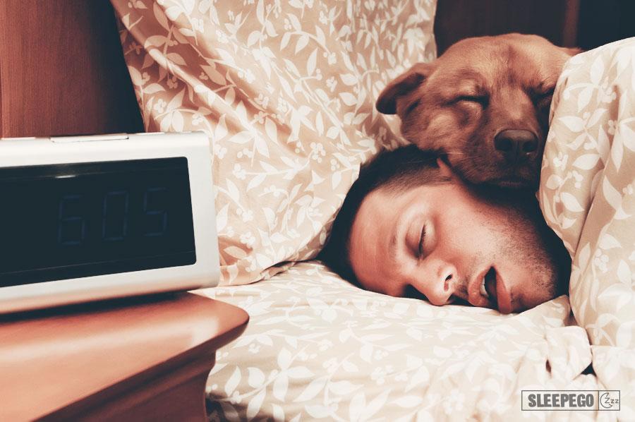 Сколько дней человек может прожить без сна? 15-3